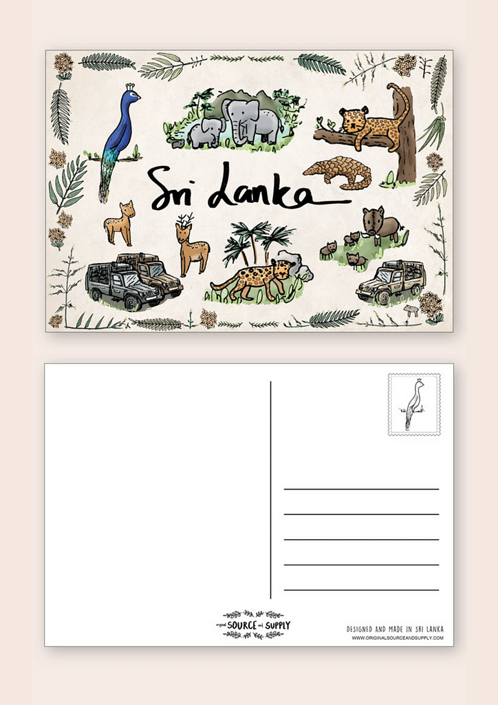 Safari Postcard
